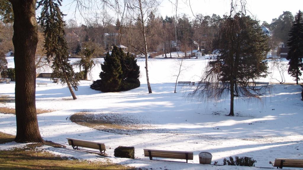 Blick auf den Kleinen Wannsee im Winter